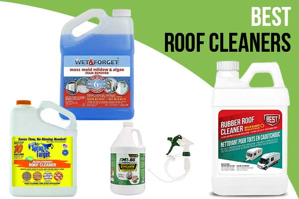 Best Roof Cleaners